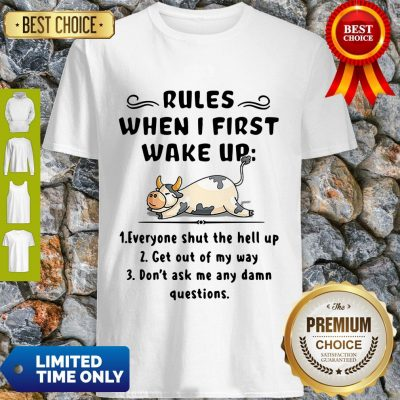 Funny Cow Rules When I First Wake Up Shirt