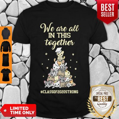 Pretty We Are All In This Together #class Of 2020 Strong Cat Shirt