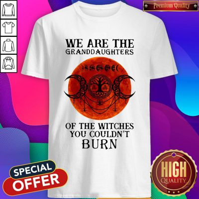Top We Are The Granddaughters Of The Witches You Couldn't Burn Shirt