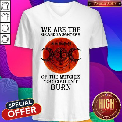Top We Are The Granddaughters Of The Witches You Couldn't Burn V-neck