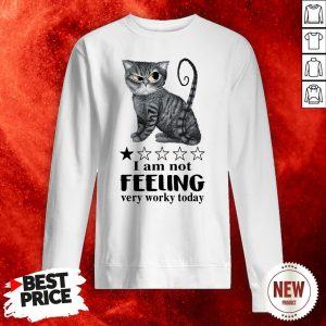 Cat I Am Not Feeling Very Worky Today Sweatshirt