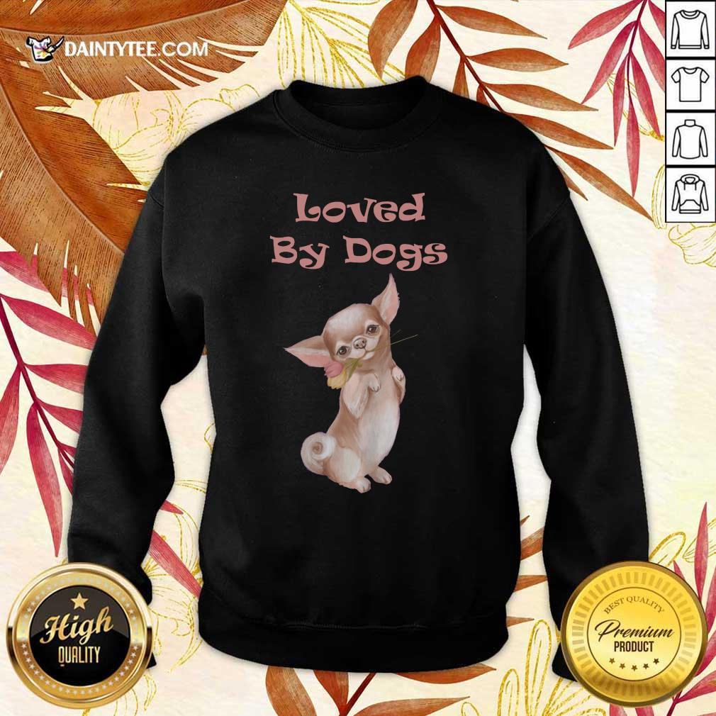 Chihuahua Loved By Dogs Sweater